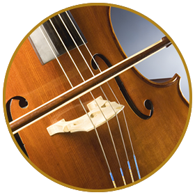 Learn play Cello? - Rubio Music Academy